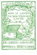 EX LIBRIS DOMINICI REBUSCHINII (odkaz v elektronickém katalogu)