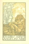 EX-LIBRIS ALOYSII ANGELINI ARCH (odkaz v elektronickém katalogu)