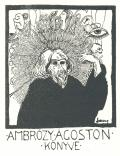 AMBRÓZY ÁGOSTON KÖNYVE (odkaz v elektronickém katalogu)