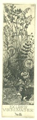 EXLIBRIS V.SCHUMACHER (odkaz v elektronickém katalogu)