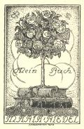Mein Buch MARIA RIEDEL (odkaz v elektronickém katalogu)