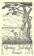 Grosz Juliska könyve (odkaz v elektronickém katalogu)