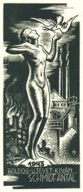 1943 BOLDOG UJÉVET KIVÁN SCHMIDT ANTAL (odkaz v elektronickém katalogu)