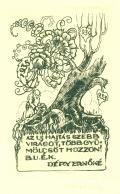 B.U.É.L. DÉRY ERNÖNÉ (odkaz v elektronickém katalogu)
