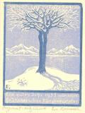 Ein gutes Jahr 1935 wünschen Dr. J. Klüber u. Frau Klingenmünster (odkaz v elektronickém katalogu)