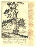 Viel Glüch für 1931 wünscht H. Schaefer mit Familie (odkaz v elektronickém katalogu)