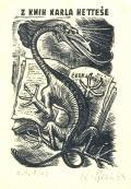 Z KNIH KARLA HETTEŠE (odkaz v elektronickém katalogu)