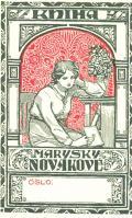 KNIHA MARYŠKY NOVÁKOVÉ (odkaz v elektronickém katalogu)
