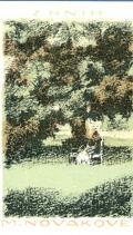 Z KNIH M. NOVÁKOVÉ (odkaz v elektronickém katalogu)