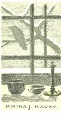KNIHA J. KAVKY (odkaz v elektronickém katalogu)