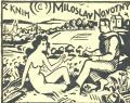 Z KNIH MILOSLAV NOVOTNÝ (odkaz v elektronickém katalogu)