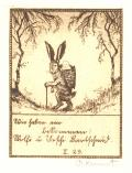 [Zajíc nese nůši s miminem] (odkaz v elektronickém katalogu)