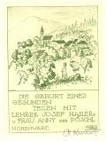 DIE GEBURT EINES GESUNDEN TEILEN MIT LEHRER JOSEF HASLER u FRAU ANNY geb. PÖSCHL (odkaz v elektronickém katalogu)