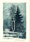 [Břízy v lese] (odkaz v elektronickém katalogu)