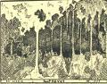 Ex Libris Rog PRÉVOT (odkaz v elektronickém katalogu)