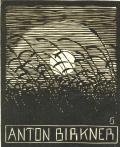 ANTON BIRKNER (odkaz v elektronickém katalogu)