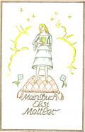 Mein Buch Elsi Mettler (odkaz v elektronickém katalogu)