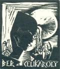 BERCELIKÁROLY (odkaz v elektronickém katalogu)