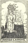 SZENES L. KÖNYVE (odkaz v elektronickém katalogu)