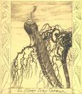 Ex libris Erny Carmen (odkaz v elektronickém katalogu)
