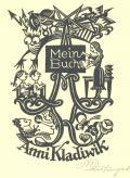 Mein Buch Anni Kladiwik (odkaz v elektronickém katalogu)